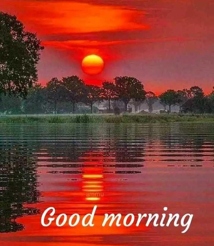 🎁ವಾರ್ಷಿಕೋತ್ಸವ - artin Good morning - ShareChat