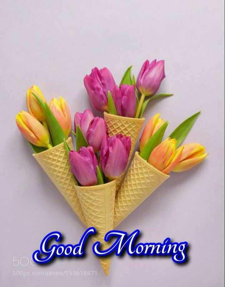 🎁ವಾರ್ಷಿಕೋತ್ಸವ - Good Morning 500px . com / photo / 193618471 - ShareChat