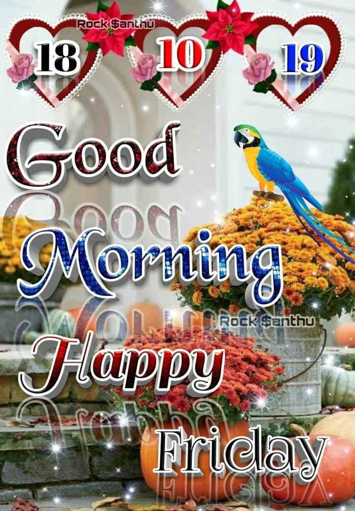 🎁ವಾರ್ಷಿಕೋತ್ಸವ - Rock Santhu Co 3 . Good Morning Flappy Friday Rock Santhu - ShareChat