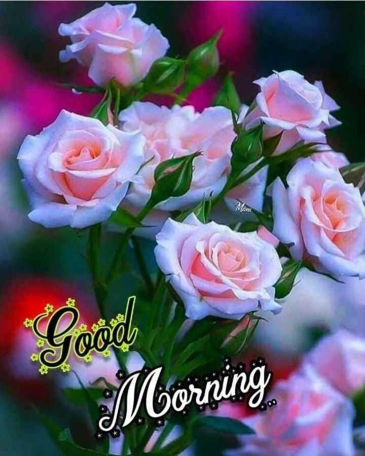 🎁ವಾರ್ಷಿಕೋತ್ಸವ - MOR Good Morning - ShareChat