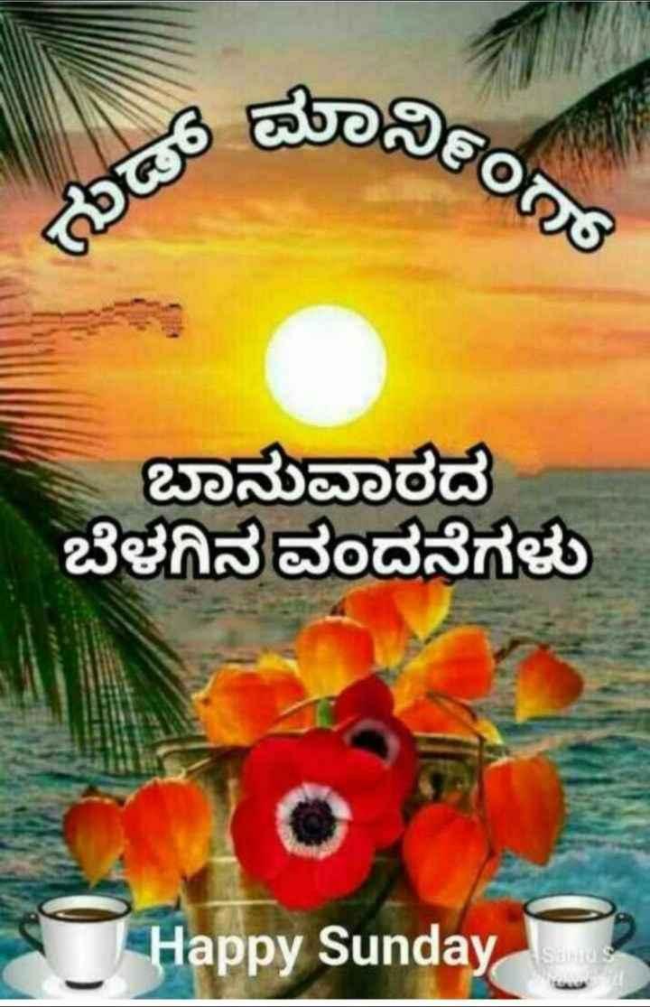 🎁ವಾರ್ಷಿಕೋತ್ಸವ - ಈ ನೀಂ ಬಾನುವಾರದ ಬೆಳಗಿನ ವಂದನೆಗಳು Happy Sunday - ShareChat