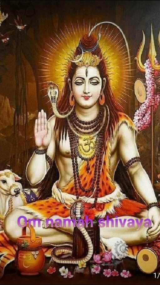 🔱ಶಿವರಾತ್ರಿ ಆಚರಣೆ - anh shivayas - ShareChat