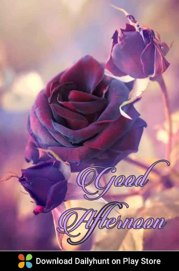 ಶುಭಮಧ್ಯಾನ - aceed O Afternoon Download Dailyhunt on Play Store - ShareChat