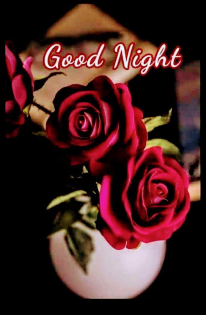 🌃ಶುಭರಾತ್ರಿ - x Good Night - ShareChat