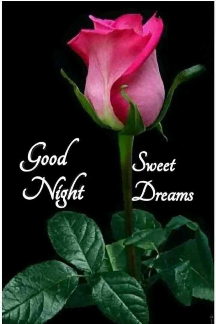 🌃ಶುಭರಾತ್ರಿ - Good Sweet Dreams - ShareChat