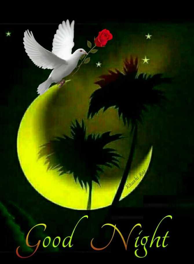 🌃ಶುಭರಾತ್ರಿ - Khushi Raj Good Night - ShareChat
