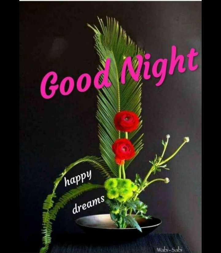 🌃ಶುಭರಾತ್ರಿ - Good Night happy dreams Wabi - Sabi - ShareChat
