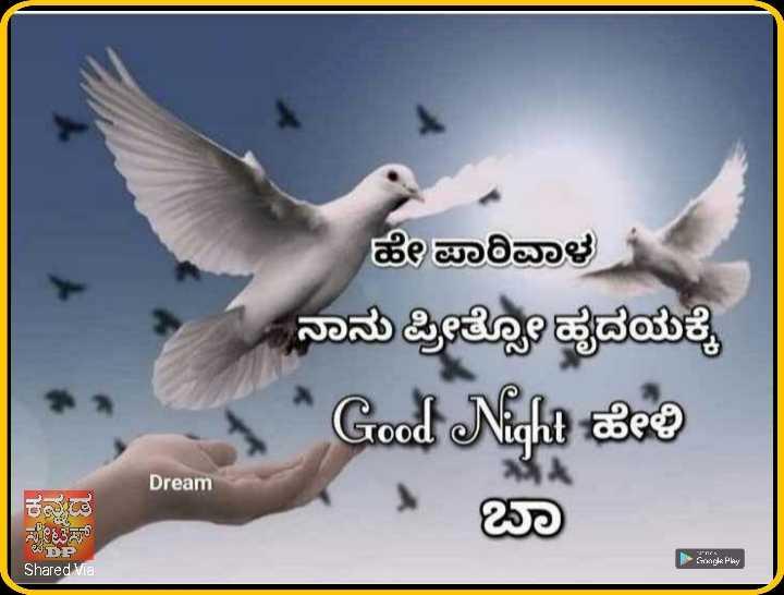 🌃ಶುಭರಾತ್ರಿ - ಹೇ ಪಾರಿವಾಳ ನಾನು ಪ್ರೀತೋತೃದಯಕ್ಕೆ Good Night to ಬಾ Dream ಕನ್ನಡ ಟೆಸ್ DP Shared Via - ShareChat