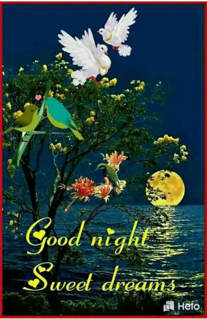 🌃ಶುಭರಾತ್ರಿ - Good night Sweet dreams a Heto - ShareChat