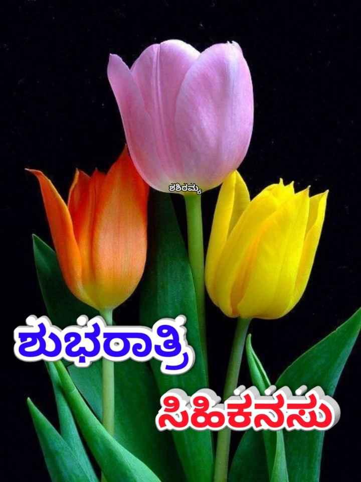 🌃ಶುಭರಾತ್ರಿ - ಶಶಿರಮ್ಮ ಶುಭೂತಿ - ShareChat