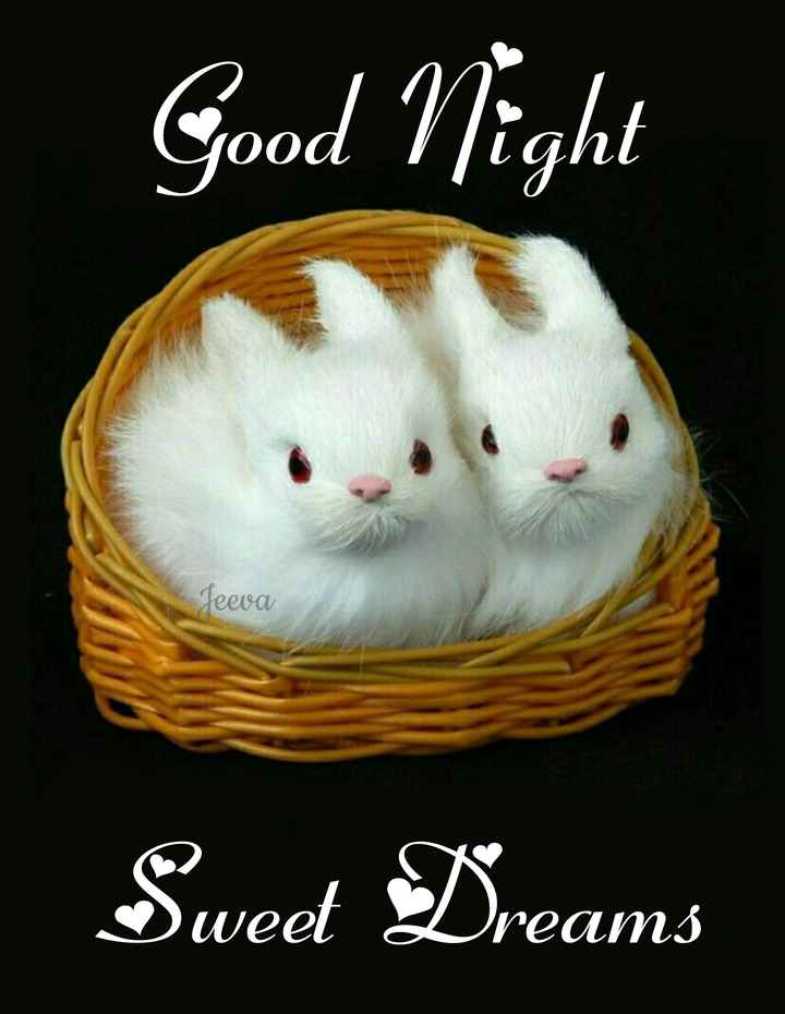 🌃ಶುಭರಾತ್ರಿ - Good Night Jeeva Sweet Dreams - ShareChat
