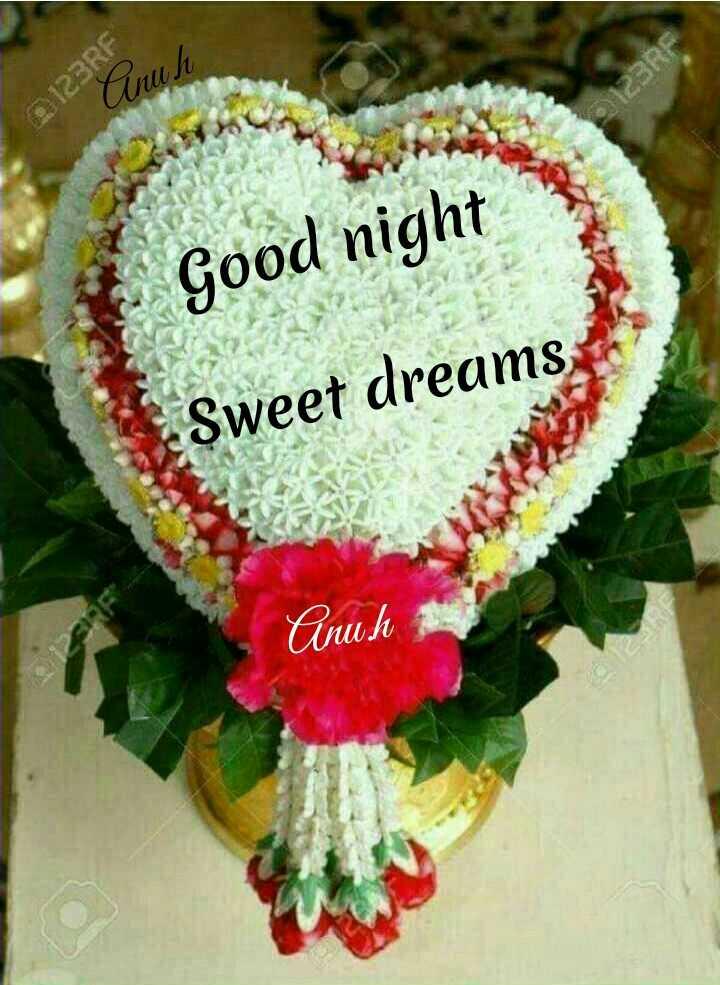 🌃ಶುಭ ರಾತ್ರಿ - 2123RF Cunuh $ 123RF Good night Sweet dreams Cinch - ShareChat