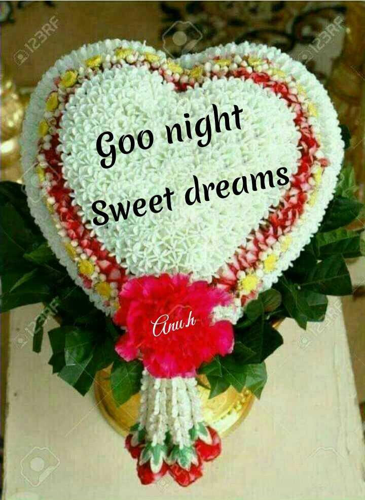 🌃ಶುಭ ರಾತ್ರಿ - 123RF $ 123RF Goo night Sweet dreams Cenuh - ShareChat
