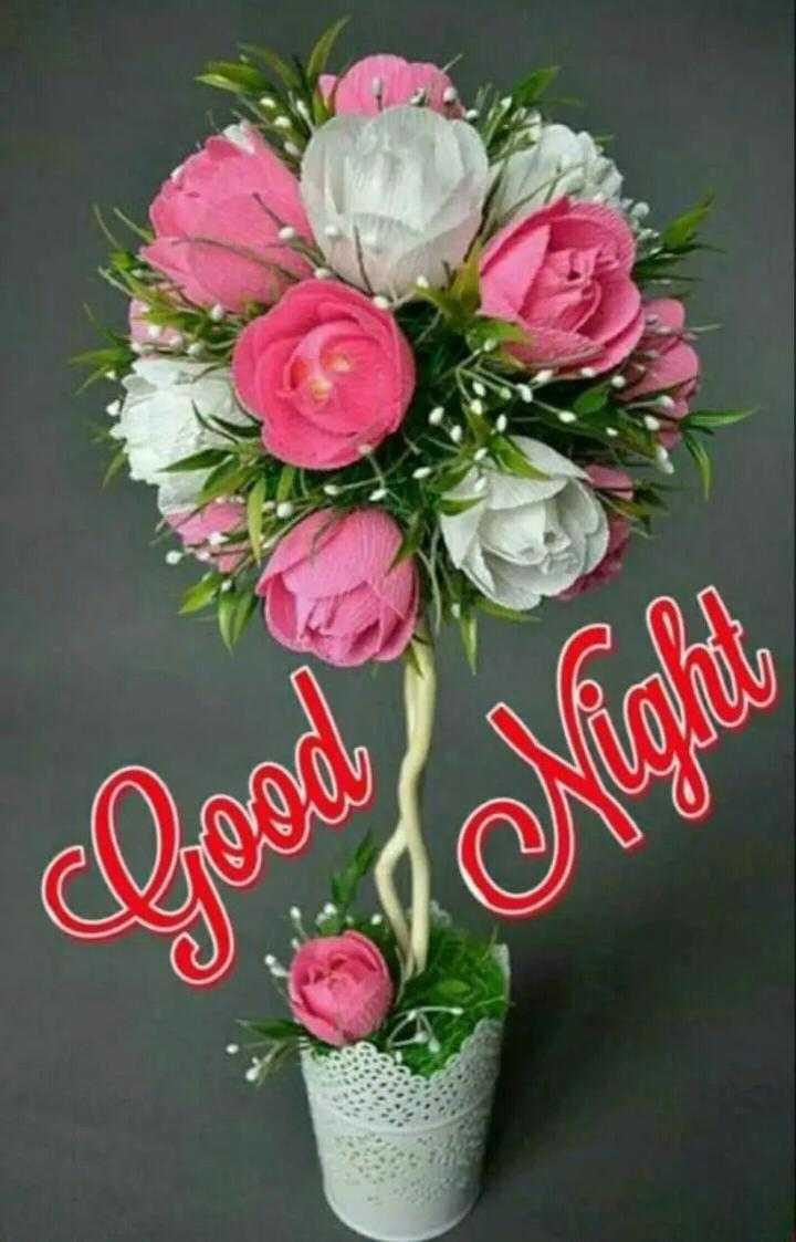 🌃ಶುಭ ರಾತ್ರಿ - Good SI Night - ShareChat