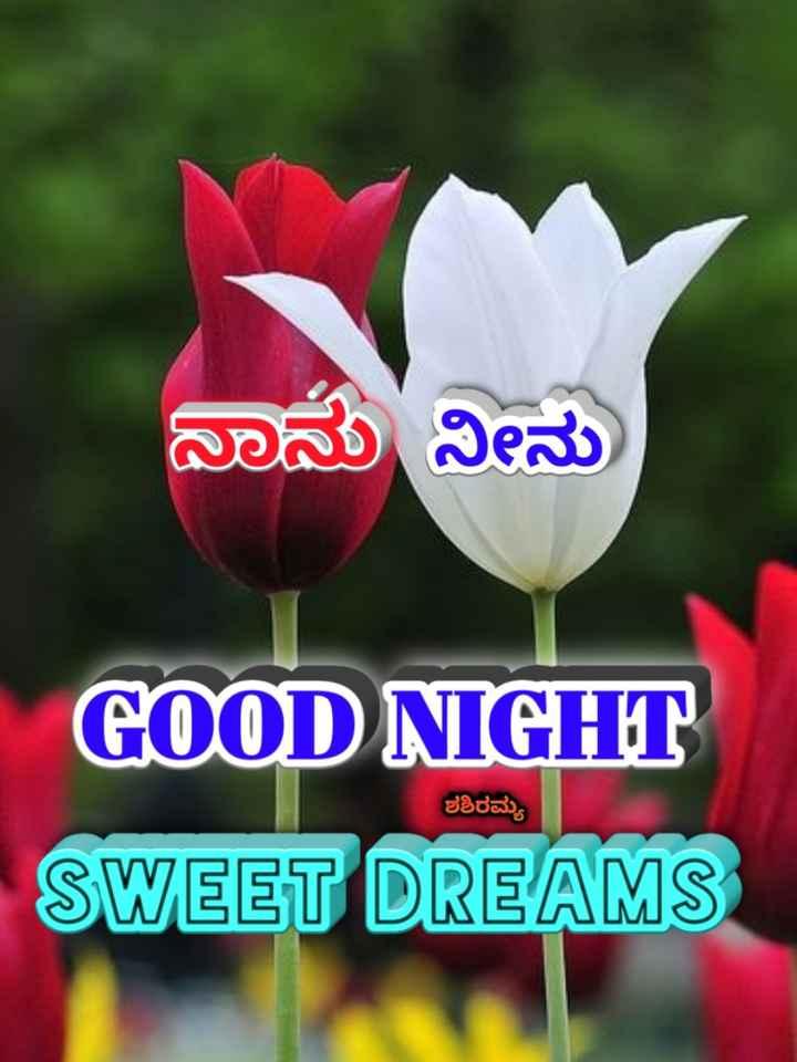 🌃ಶುಭರಾತ್ರಿ - ನಾನು ನೀನು GOOD NIGHT SWEET DREAMS ಶಶಿರಮ್ಯ - ShareChat