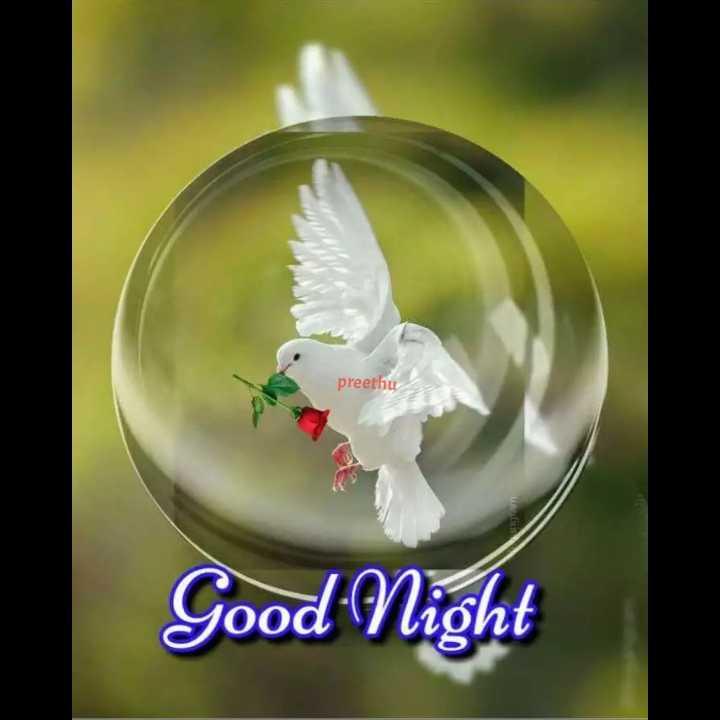 🌛ಶುಭ  ರಾತ್ರಿ🌜 - preethu Good Night - ShareChat