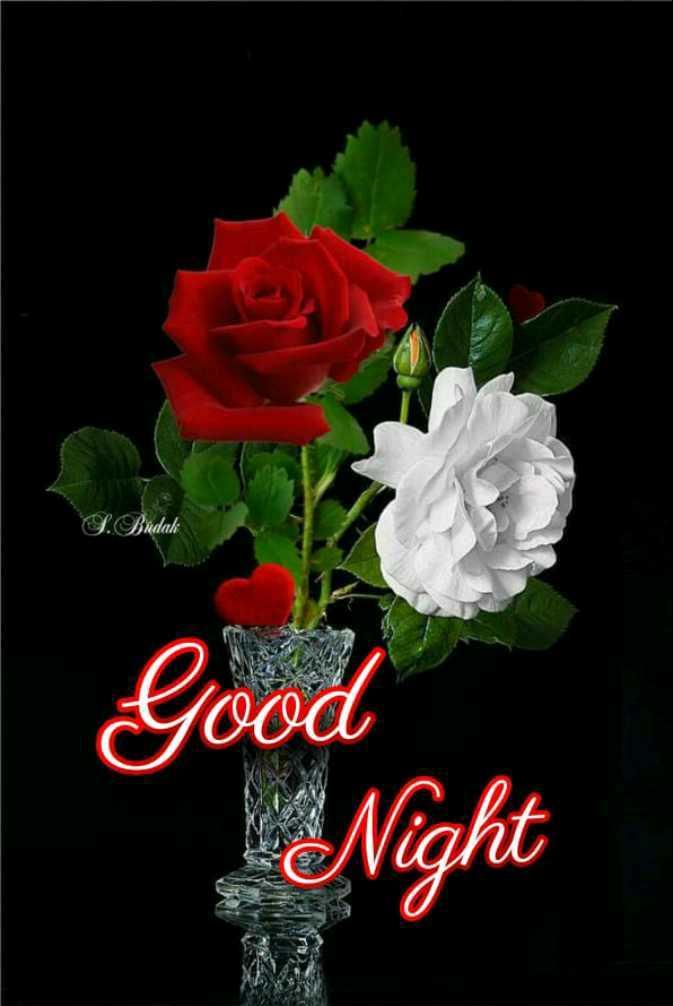 🌃ಶುಭ ರಾತ್ರಿ - L . Bra Good Night - ShareChat