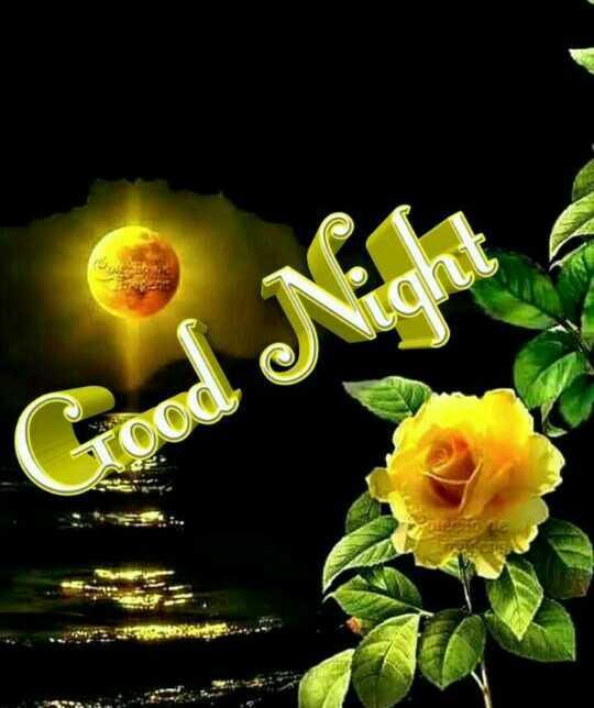 🌃ಶುಭ ರಾತ್ರಿ - Good Nich Vood - ShareChat