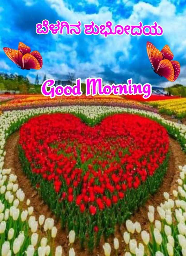 👏ಶುಭಾಶಯಗಳು - ಬೆಳಗಿನ ಶುಭೋದಯ Good Morning - ShareChat