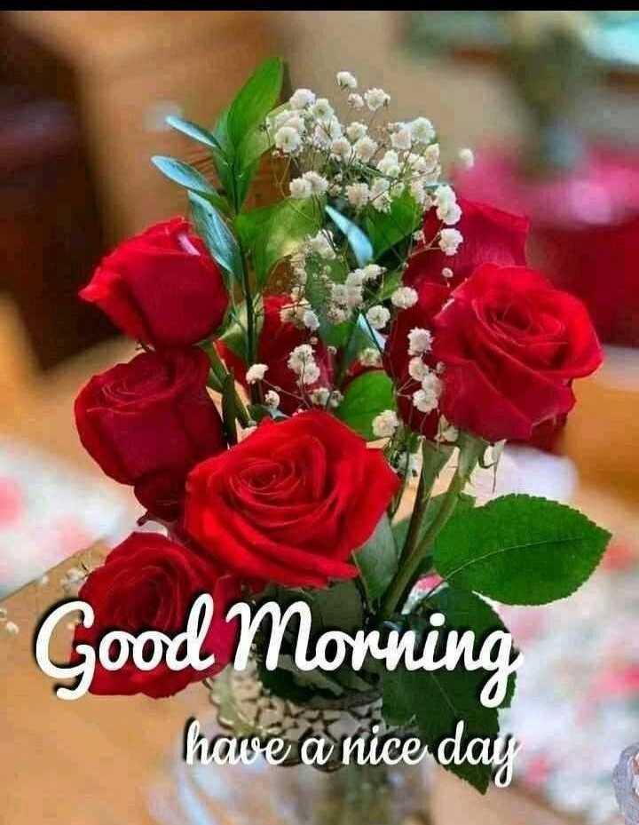 👏ಶುಭಾಶಯಗಳು - Good Morning have a nice day - ShareChat