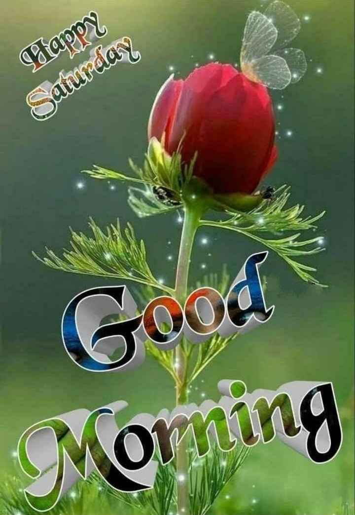 👏ಶುಭಾಶಯಗಳು - Happy Saturday Goo Morning - ShareChat