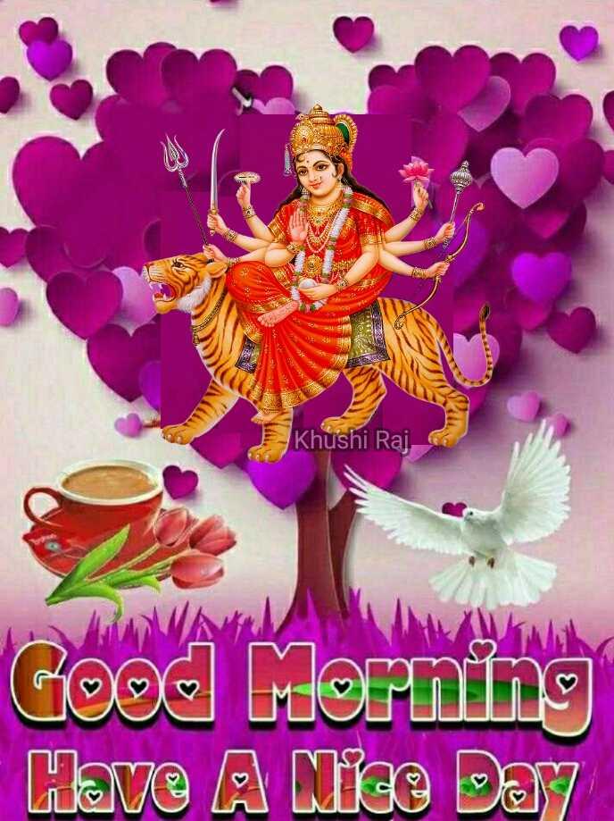 👏ಶುಭಾಶಯಗಳು - Khushi Rai Good Morning Have A Nice Day - ShareChat