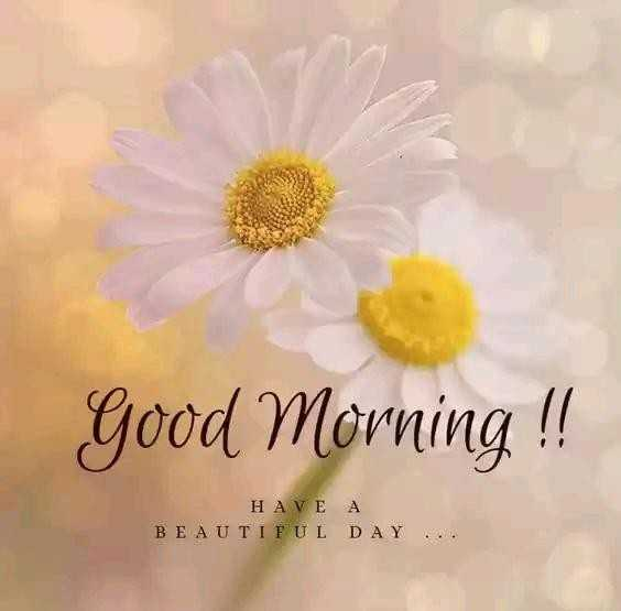 👏ಶುಭಾಶಯಗಳು - Good Morning ! ! Η Α ν Ε Α BEAUTIFUL DAY . . . - ShareChat