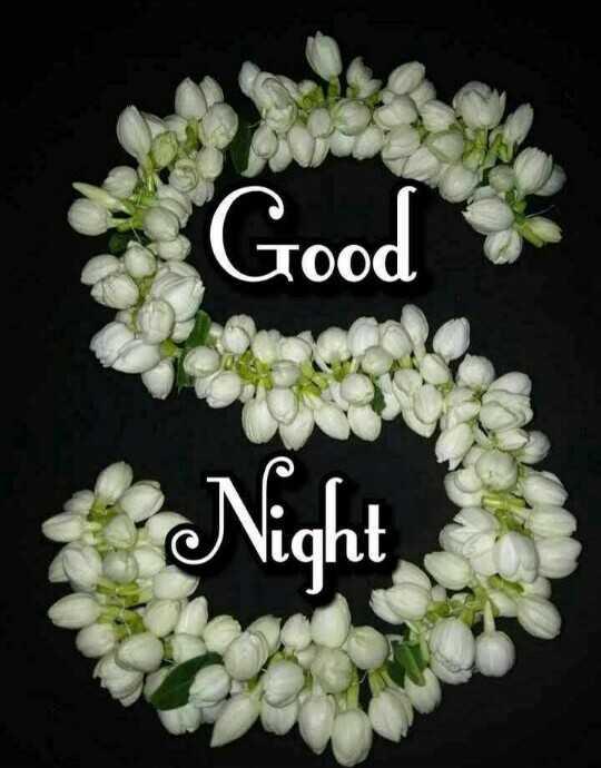 👏ಶುಭಾಶಯಗಳು - Tood Night - ShareChat