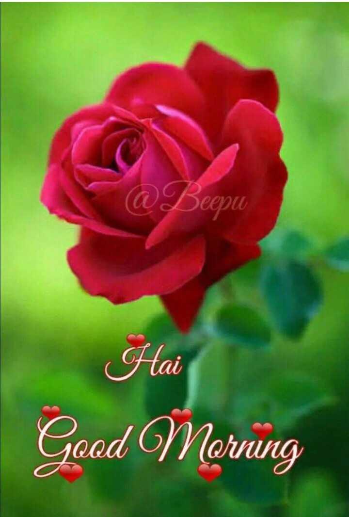 🌅ಶುಭೋದಯ - L @ Beepu Hai Good Morning - ShareChat