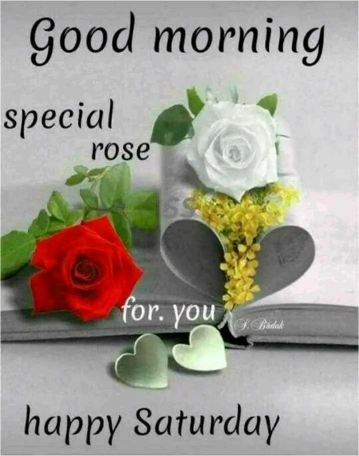 🌅ಶುಭೋದಯ - Good morning special rose for . you happy Saturday - ShareChat