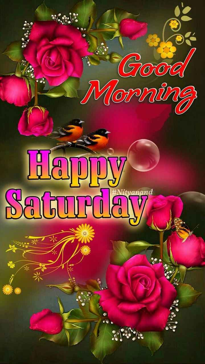 🌅ಶುಭೋದಯ - 3 Good Morning Happy Saturday # Nitvanand - ShareChat