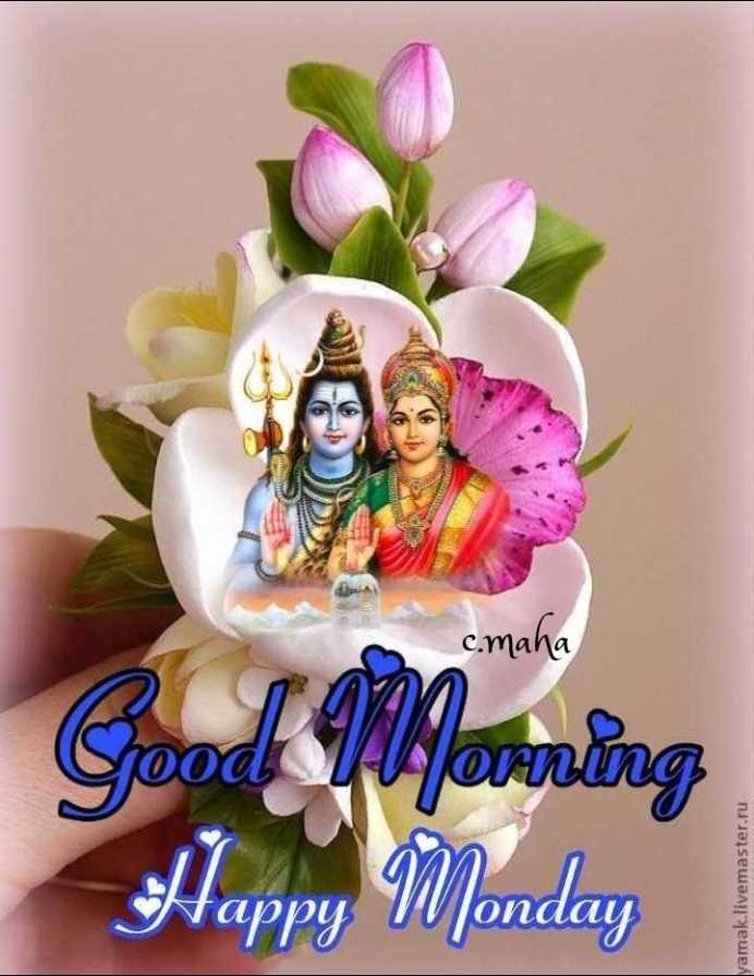 🌅ಶುಭೋದಯ - c . maha Good Yvorning Happy Monday yamak . livemaster . ru - ShareChat