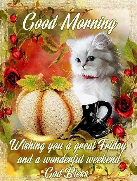 🌅ಶುಭೋದಯ - 1 Good Monning Wishing you a great Friday and a wonderful weekend God Blesse - ShareChat