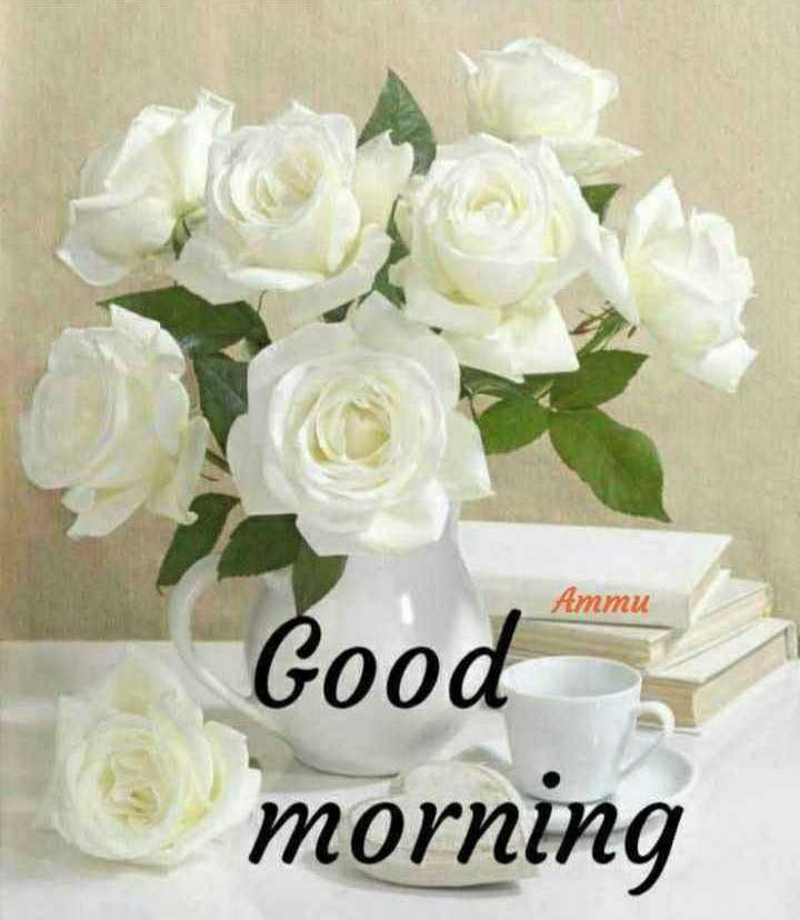 🌅ಶುಭೋದಯ - Ammu Good morning - ShareChat