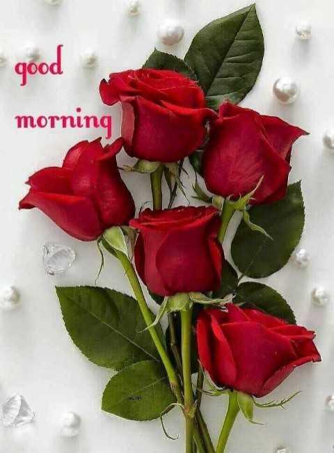 🌅ಶುಭೋದಯ - qood morning - ShareChat