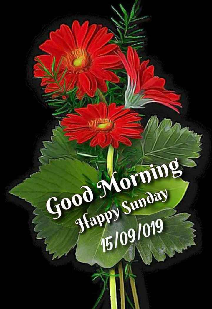 🌅ಶುಭೋದಯ - Good Morning Jappy Sunday 15 / 09 / 019 - ShareChat