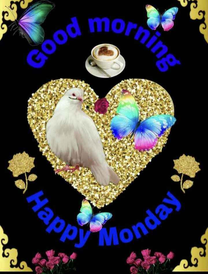 🌅ಶುಭೋದಯ - . orning Good анар , Monday - ShareChat