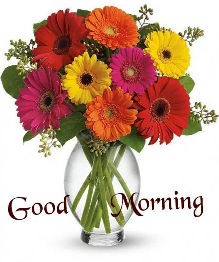 🌅ಶುಭೋದಯ - Good Morning - ShareChat