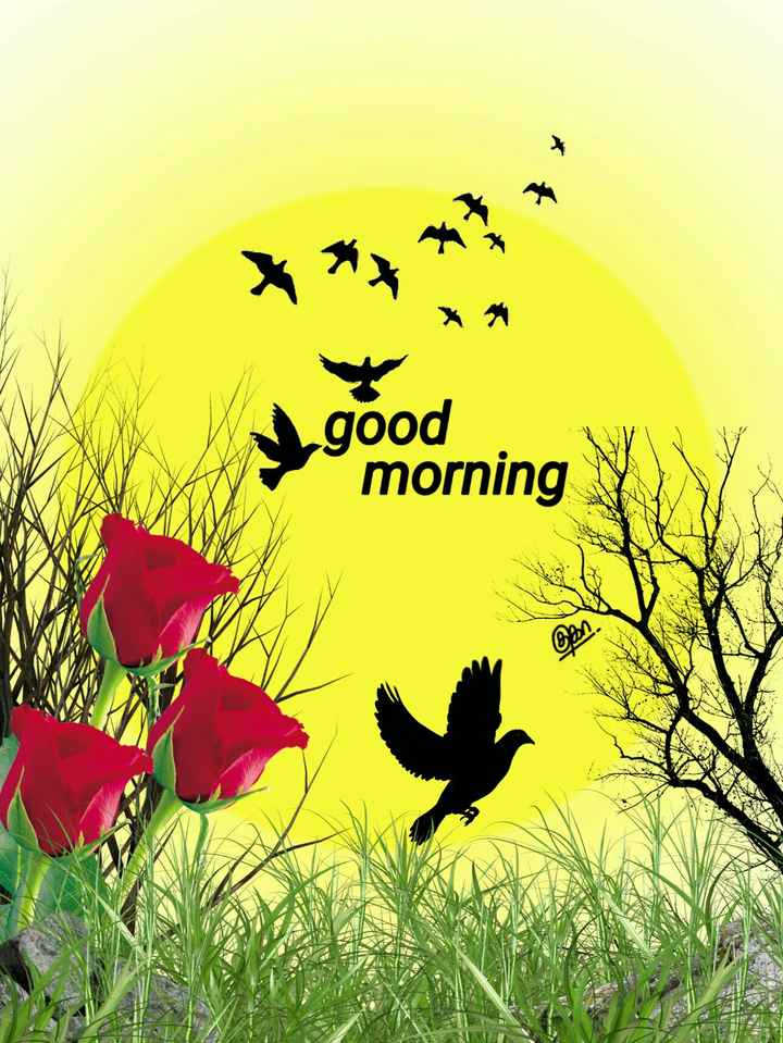 🌅ಶುಭೋದಯ - good morning can - ShareChat