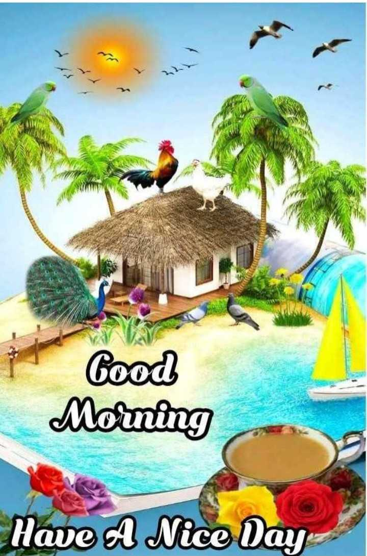 🌅ಶುಭೋದಯ - Good Morning Have A Nice Day - ShareChat