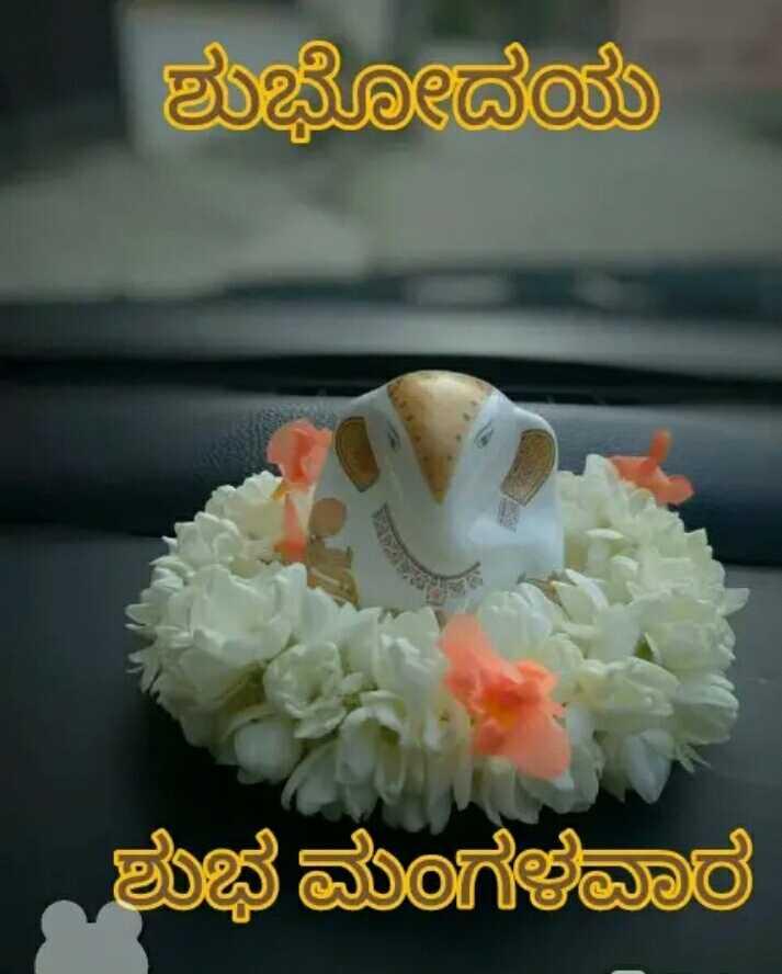 🌅ಶುಭೋದಯ - ಶುಭೋದಯ ಶುಭಮಂಗಳವಾರ - ShareChat