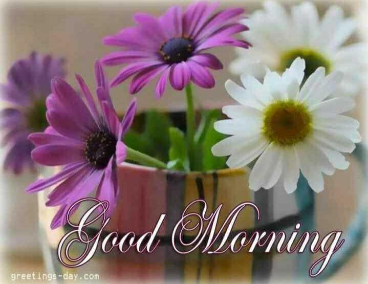 🌅ಶುಭೋದಯ - Vood Morning greetings - day . com - ShareChat
