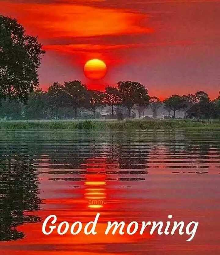 🌅ಶುಭೋದಯ - artimu Good morning - ShareChat