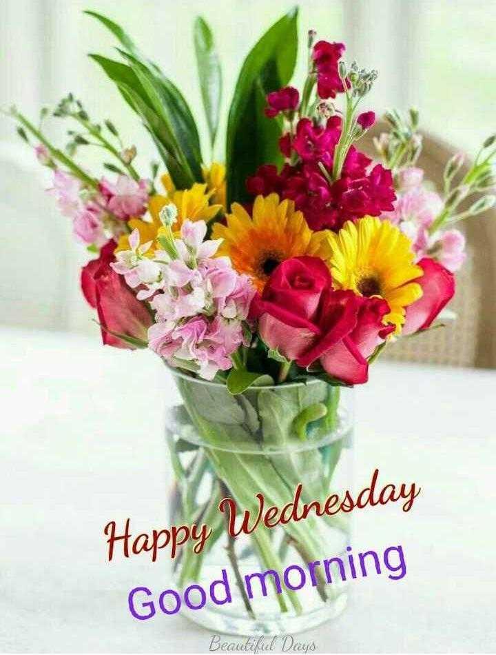 🌅ಶುಭೋದಯ - Happy Wednesday Good morning Beautiful Dezys - ShareChat