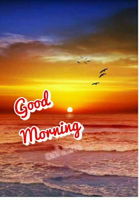 🌅ಶುಭೋದಯ - Good Morning COS - ShareChat