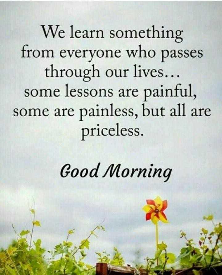 🌅ಶುಭೋದಯ - We learn something from everyone who passes through our lives . . . some lessons are painful , some are painless , but all are priceless . Good Morning - ShareChat