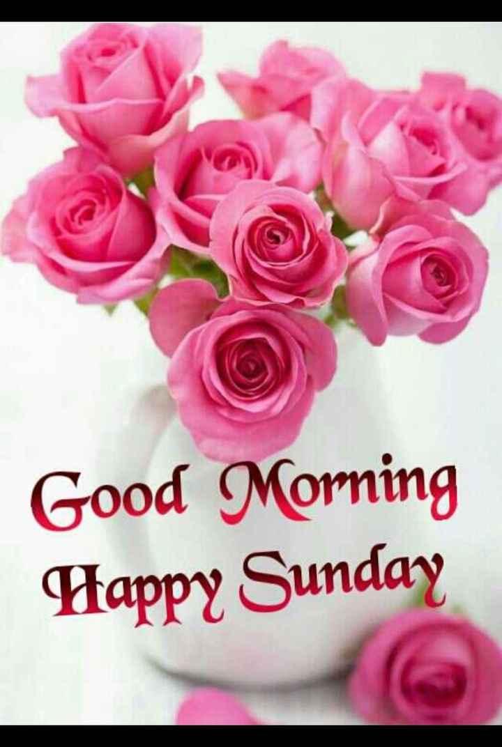 🌅ಶುಭೋದಯ - Good Morning Happy Sunday - ShareChat