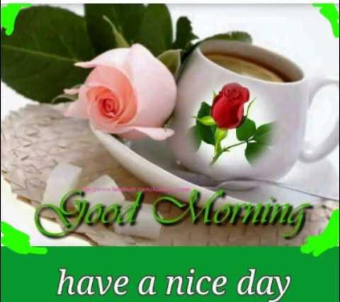🌅ಶುಭೋದಯ - ook spm / RO Good Morning have a nice day - ShareChat