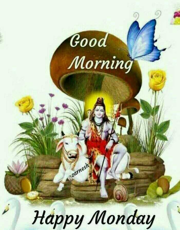 🌅ಶುಭೋದಯ - Good Morning zarnesh Happy Monday - ShareChat