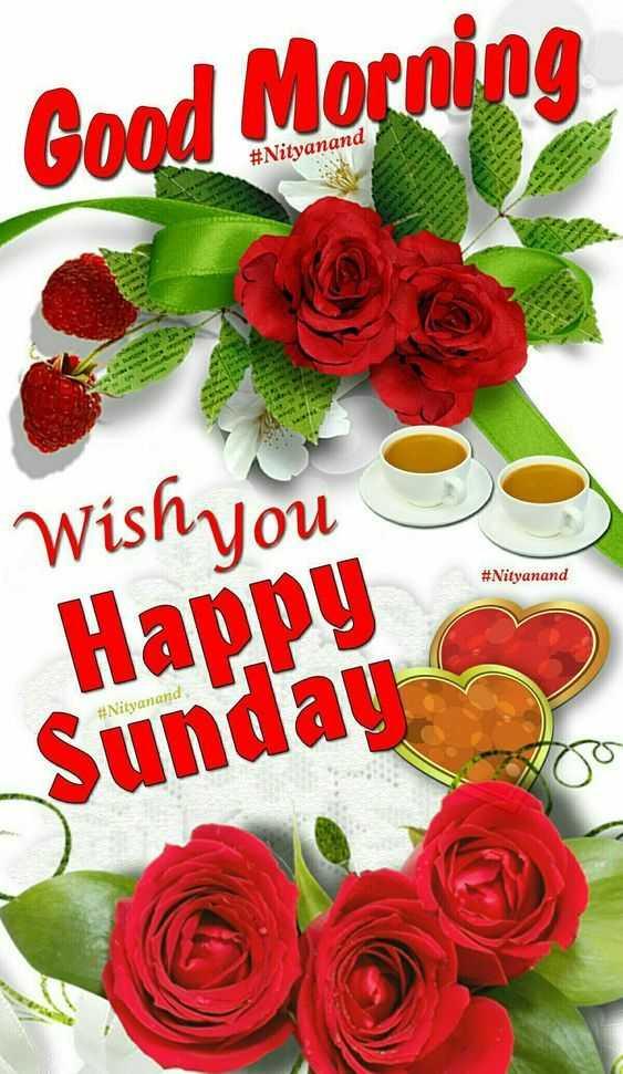 🌅ಶುಭೋದಯ - Good Morning # Nityanand Wish you # Nityanand Happy # Nityanand Sunday - ShareChat